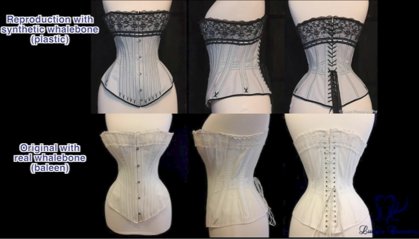 63951e260a6 Laurie tavan reproduction synthetic whalebone lucys corsetry png 1433x816 Reproduction  corsets
